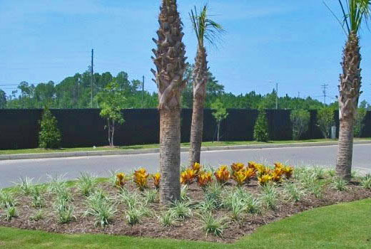 Professionally landscaping and installation for commercial property in Jackson, MS.