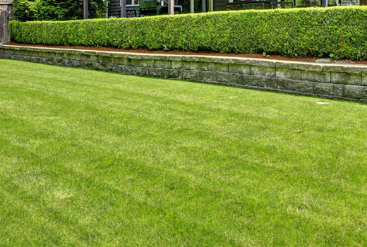 Professionally maintained lawn and landscape property by Ambiance Landscape in Jackson, MS.