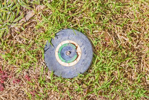 Sprinkler head for irrigation system in Jackson, MS yard.