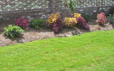 Commercial property in Jackson, MS with landscaping maintained by Ambiance Landscape.